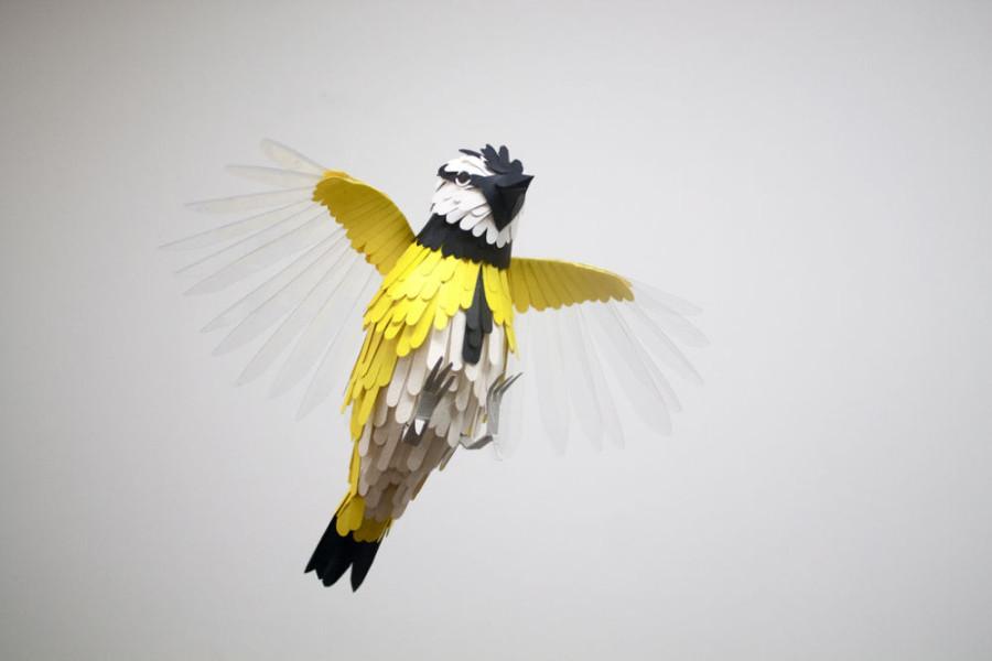 Paper-Birds-by-Diana-Beltran-Herrera-15-900x600