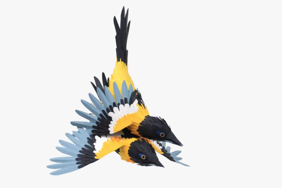 Paper-Birds-by-Diana-Beltran-Herrera-16-900x600