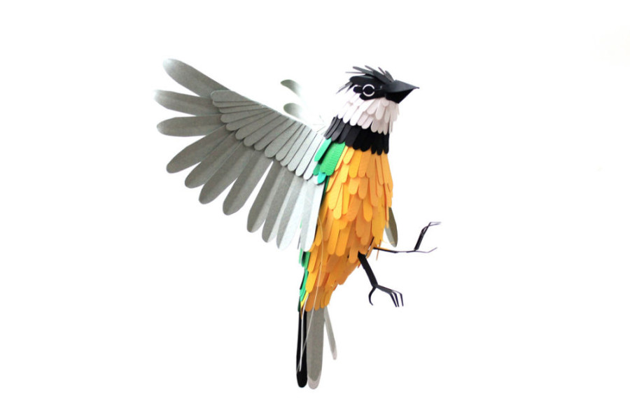 Paper-Birds-by-Diana-Beltran-Herrera-7-900x600