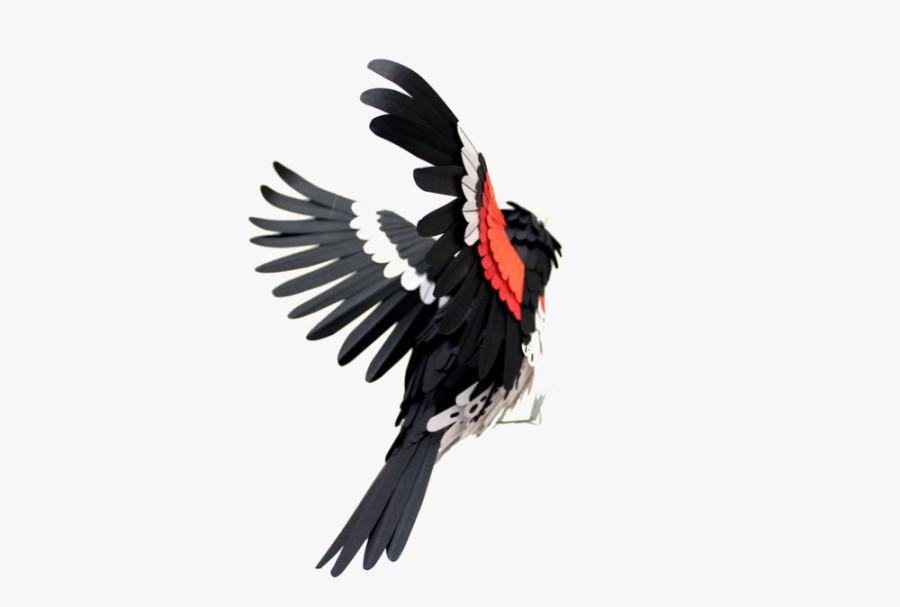 Paper-Birds-by-Diana-Beltran-Herrera-8-900x607